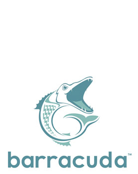 A logo for Barracuda Fiberglass     Logo Design