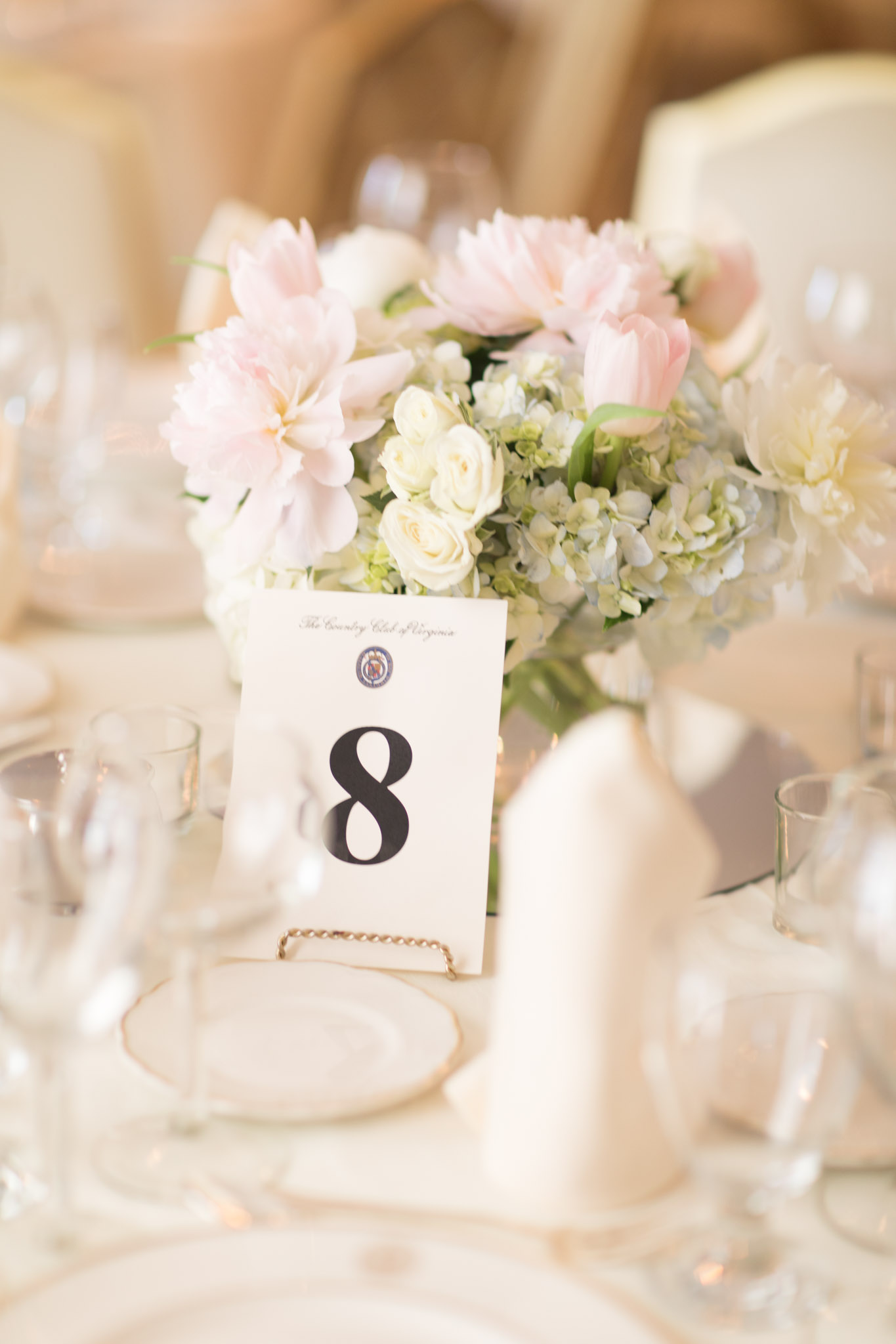 Country Club of Virginia Wedding Photographer_0001.jpg