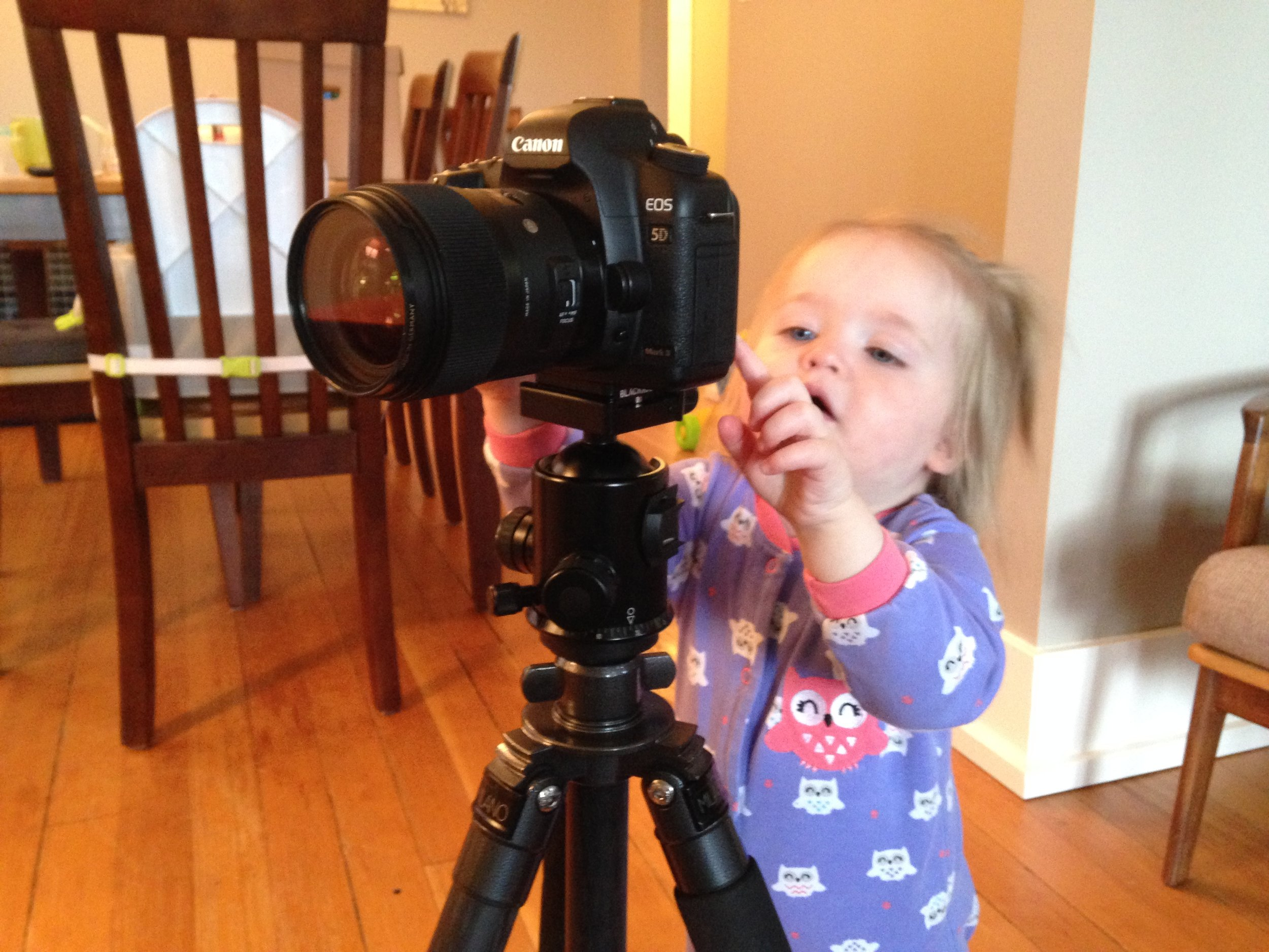 "The ""Set"" button is so obvious to kids, that they can record videos if that's what you have the ""Set"" button set to. Here, a one-and-a-half year old is recording an HD video. Too bad this camera doesn't have a continuous autofocus feature during video - I can't expect the toddler to manually focus the lens."