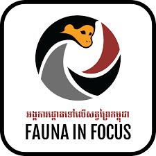 Fauna In Focus
