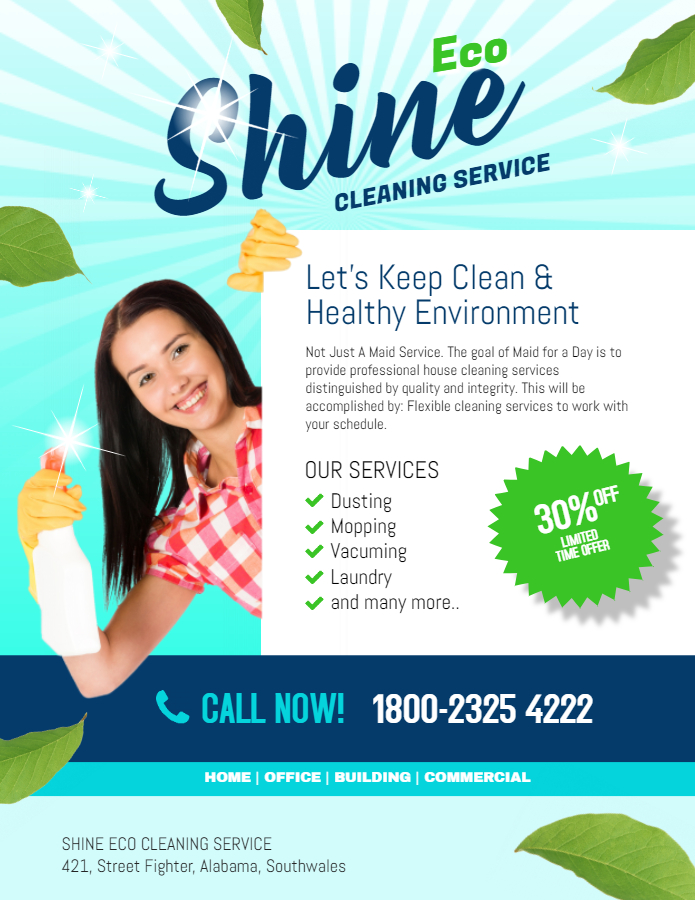 Cleaner service flyer
