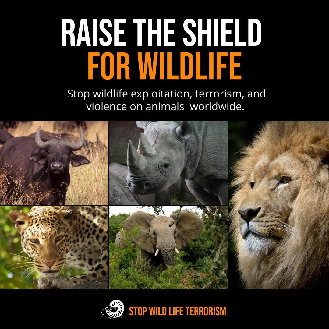 Copy of Against Wildlife Exploitation Instagram Post Template.jpg