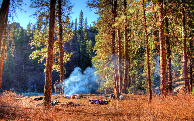 Campsite www.thehappyhabitat.com.au