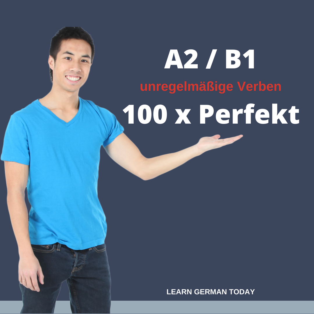 Copy of 100xPerfekt / unregelmässige Verben