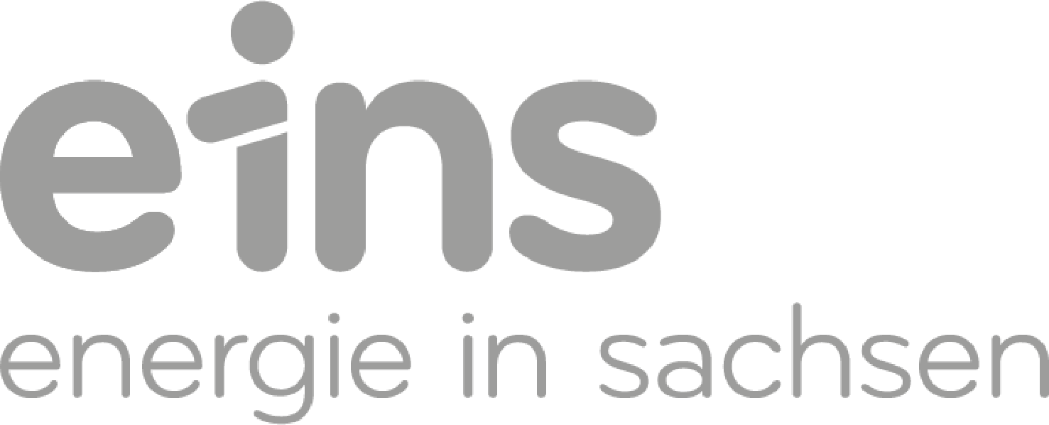 Eins_logo_1c.png