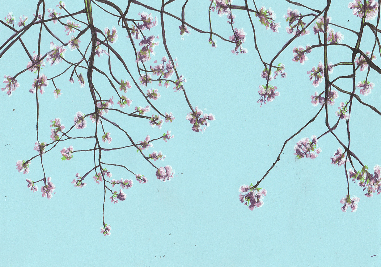 blossom copy.jpg