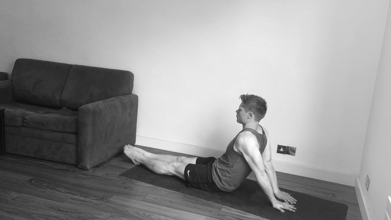 Shoulder extension, seated