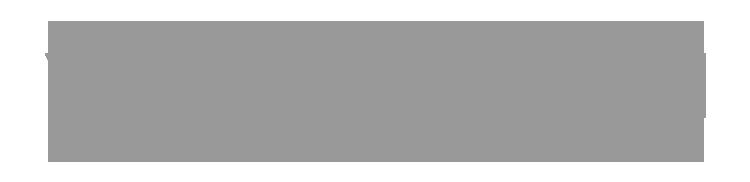 logo-grey-viessman.png