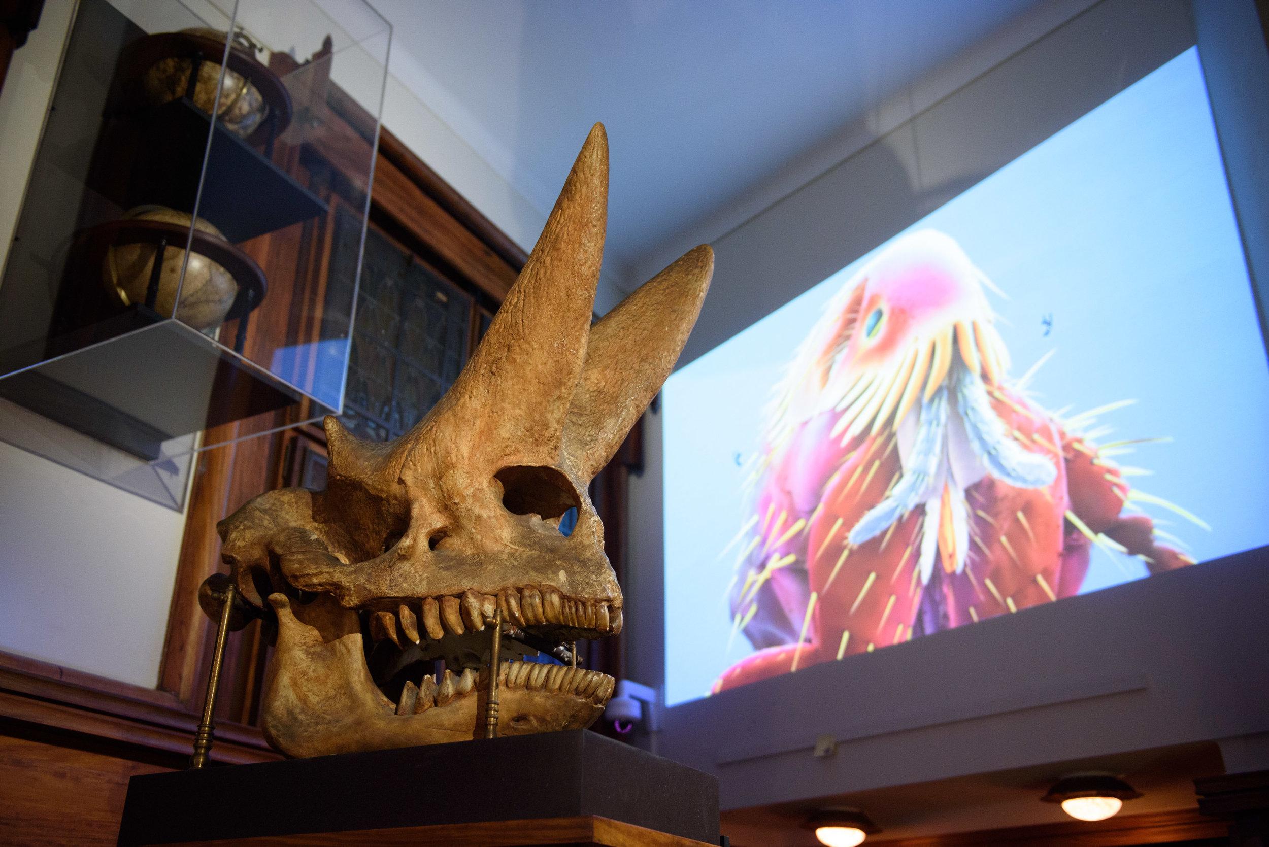 DWDD popup museum II