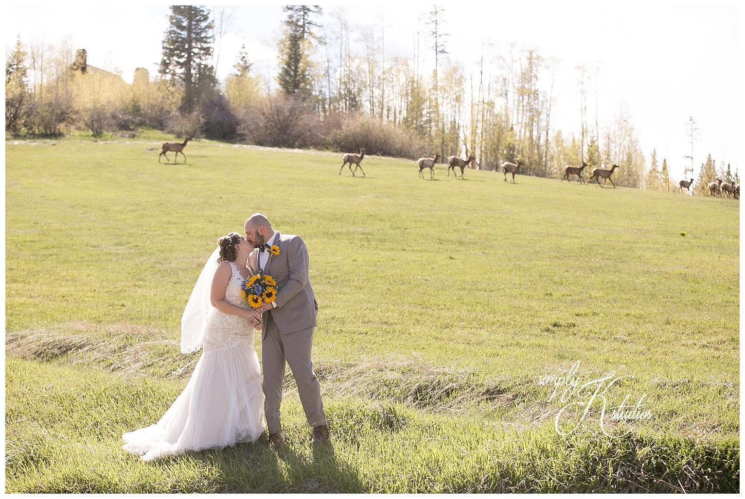 Wedding near Boulder CO.jpg
