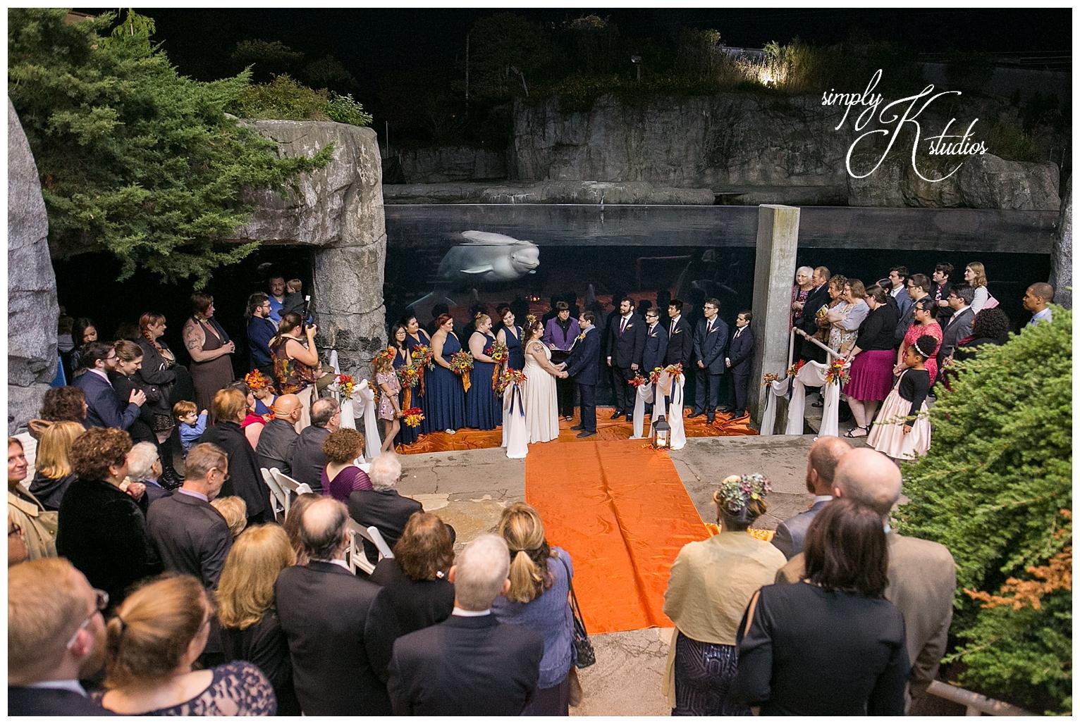 Mystic Aquarium Wedding Ceremony CT.jpg