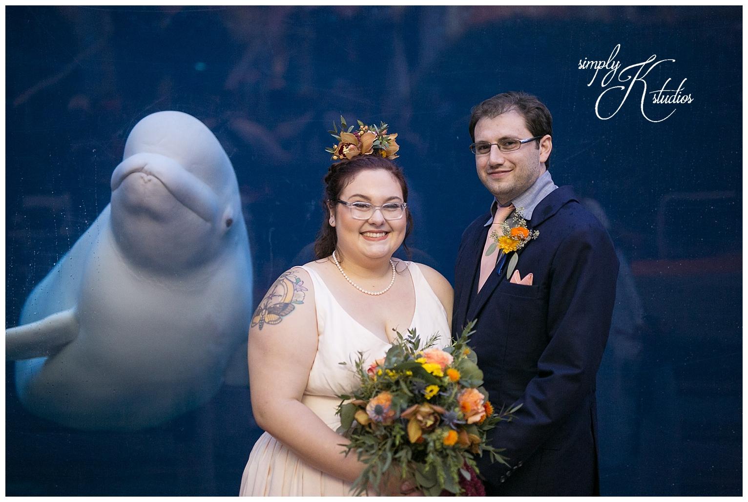 Wedding Photos at Mystic Aquarium.jpg