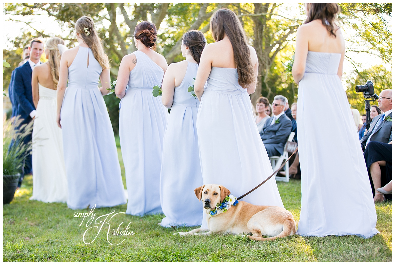 Labs with bridesmaids.jpg