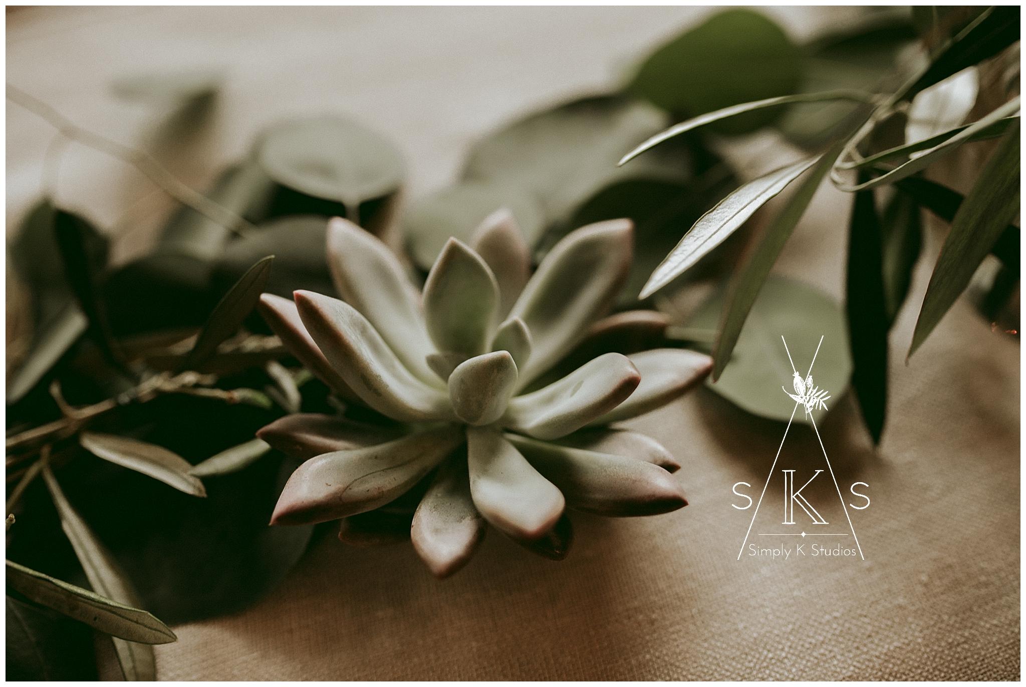 70 Succulents at a wedding.jpg