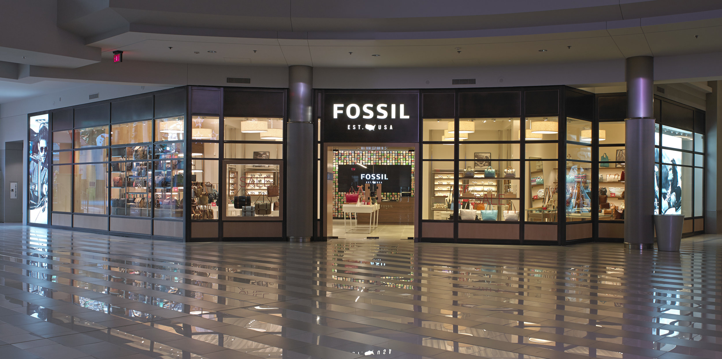 Fossil Image 6.jpg