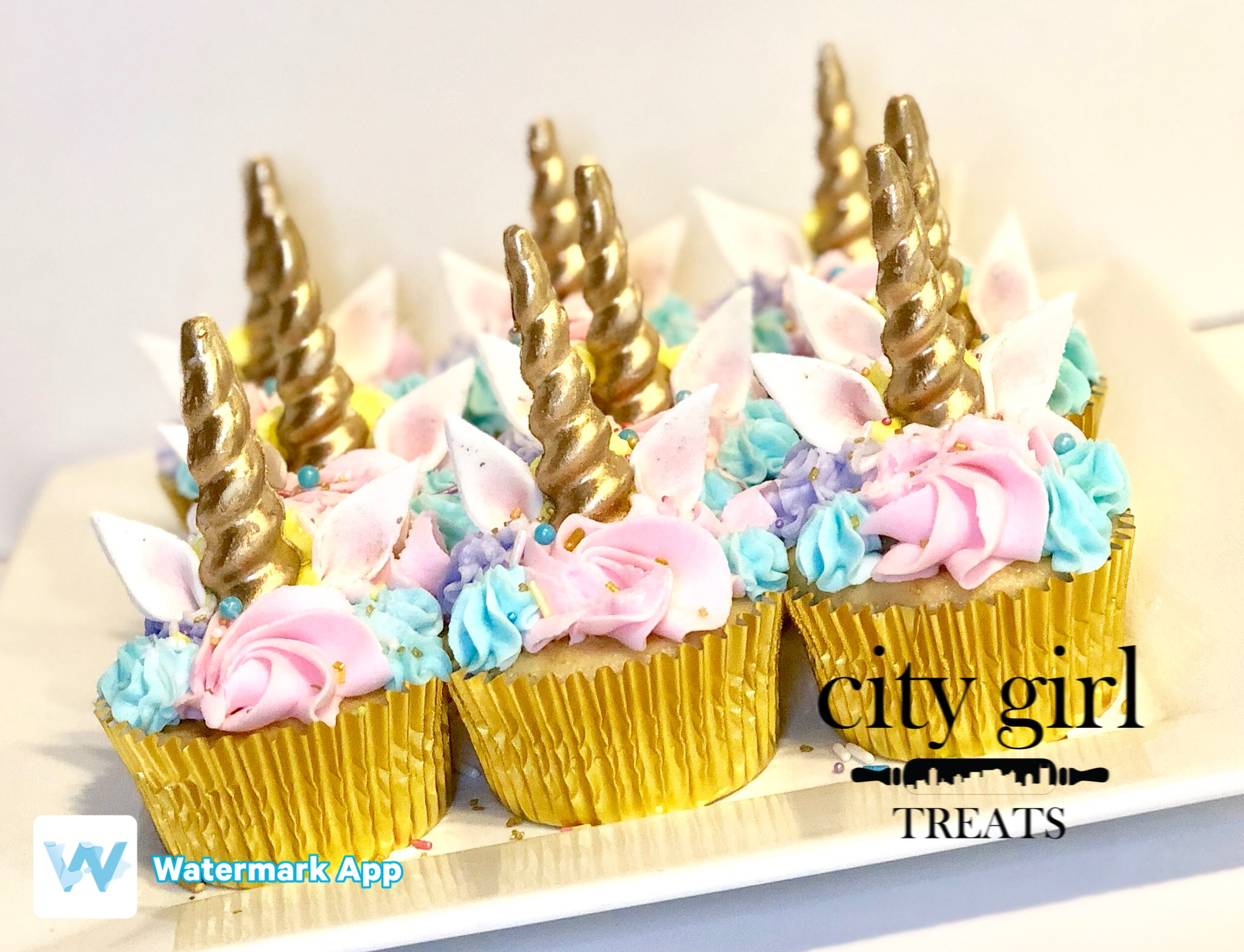 Nashville Bakery cupcakes Nashville TN