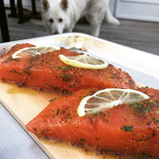 Finally have the weather to try out our new cedar planks. Here we've got some wild-caught Alaskan king salmon, quick cured (always) and glazed with honey, whole grain mustard, lemon zest, black pepper and rosemary. #cedar #salmon #seafood #wildcaught #marthasvineyard #edgartown #eeeeeats #cooking