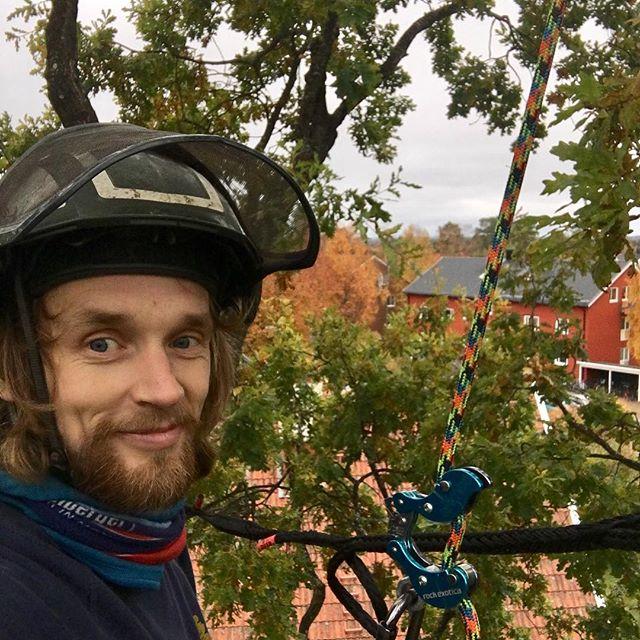 Sofiehem i fin höstskrud. Sista rycket med trädvård innan vintern. Idag fick jag äran o jobba i en av Umeås största ekar. Vart lite beskärning samt en kronstabilisering. Glad höst 🙂🍁🌳