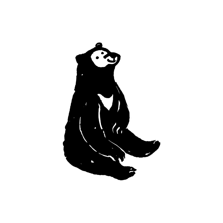 mandai_spot_0002_mspots_0029_Sun-Bear.jpg
