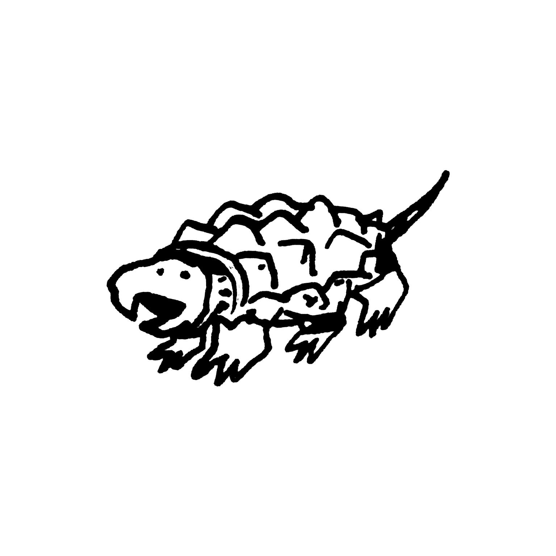 mandai_spot_0005_mspots_0026_Alligator-Snapping-Turtle.jpg