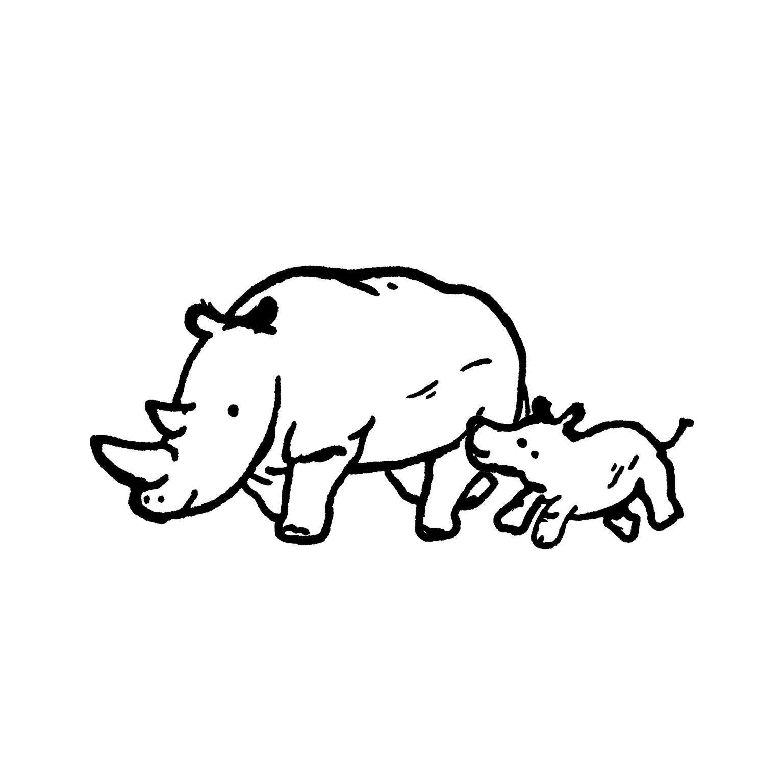 mandai_spot_0010_mspots_0021_White-Rhino.jpg