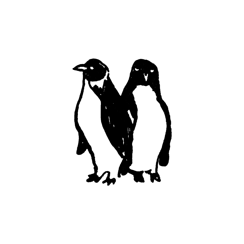 mandai_spot_0019_mspots_0012_King-Penguin.jpg
