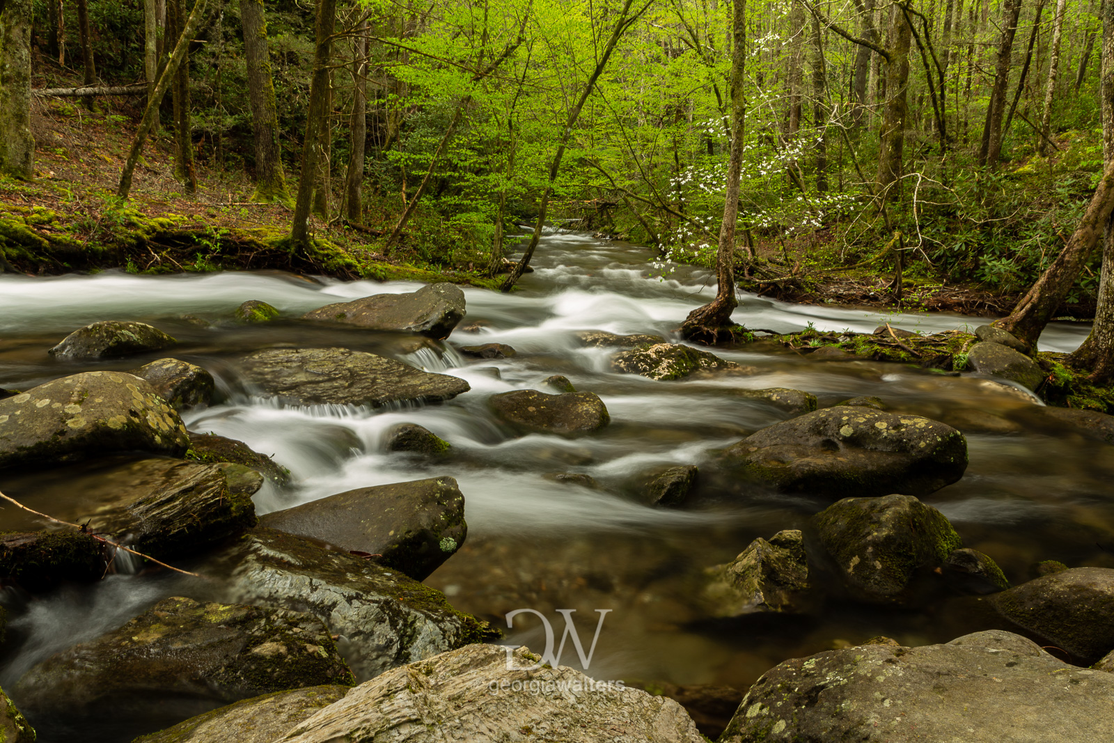 Rocky creek with misty water flowing through it.