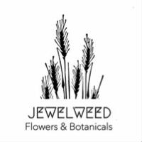 Jewel Weed Flowers & Botanicals