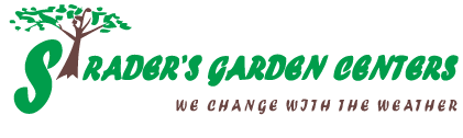Strader's Garden Center
