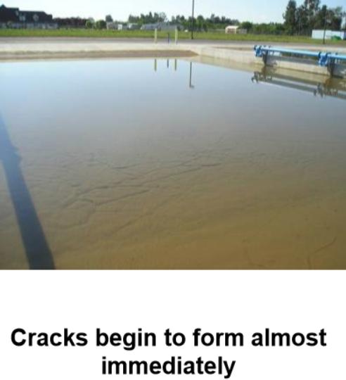 cracks form.PNG