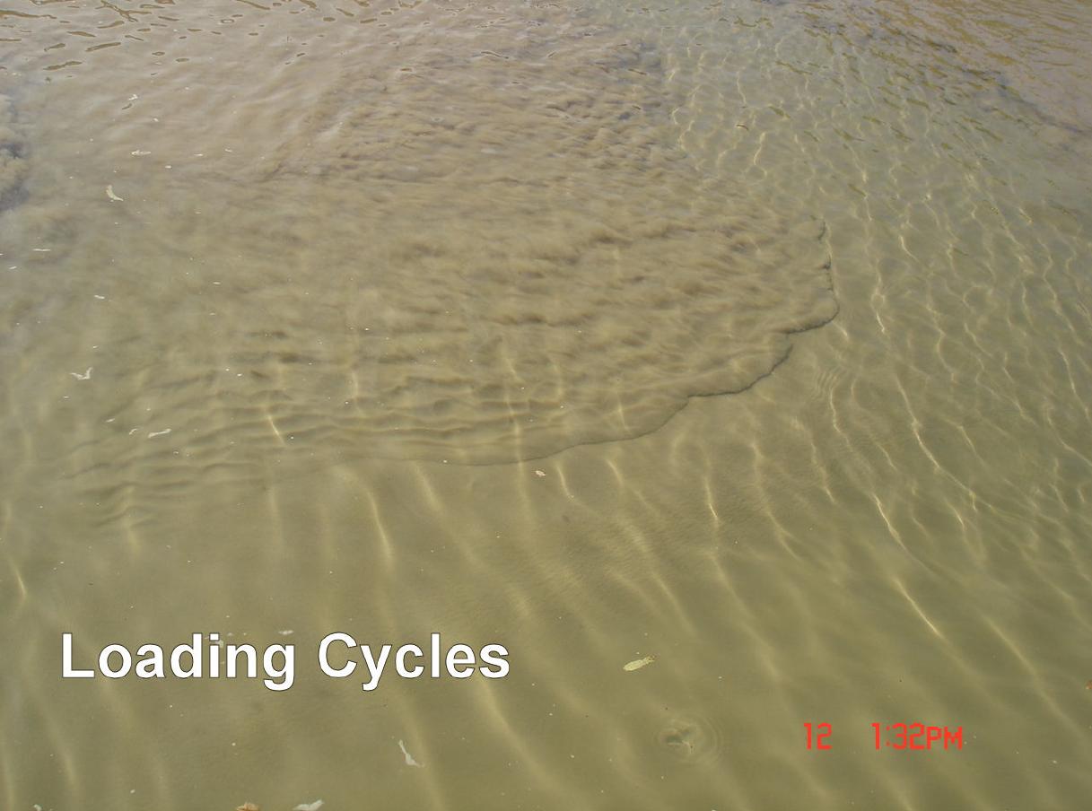 dry sludge loading.PNG