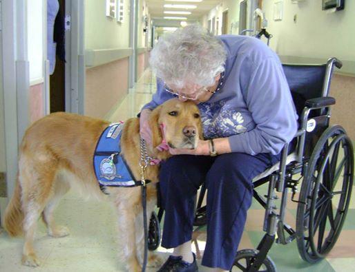 comfort-dog-elderly-lady.jpg