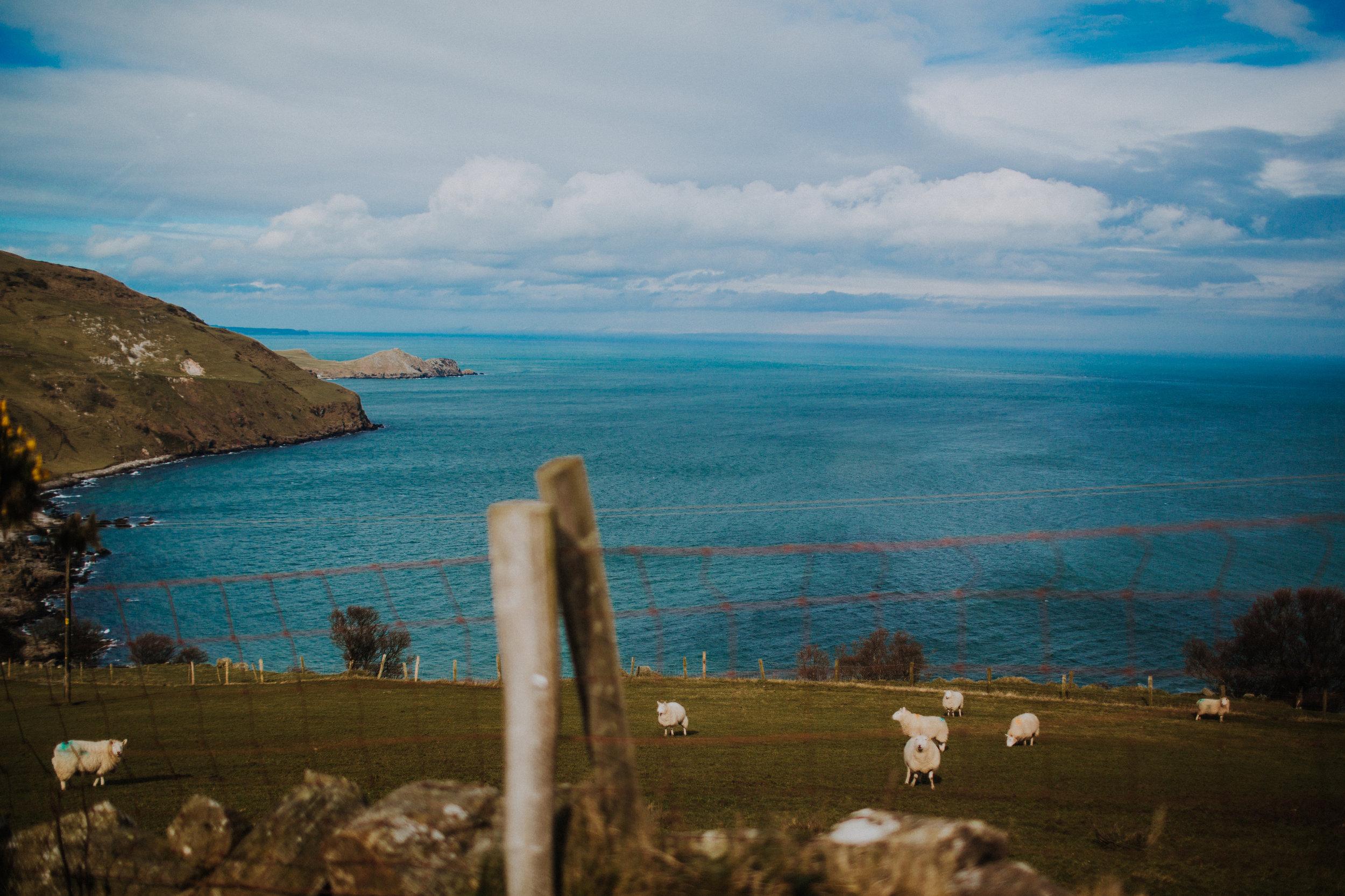 N Ireland March-0342.jpg