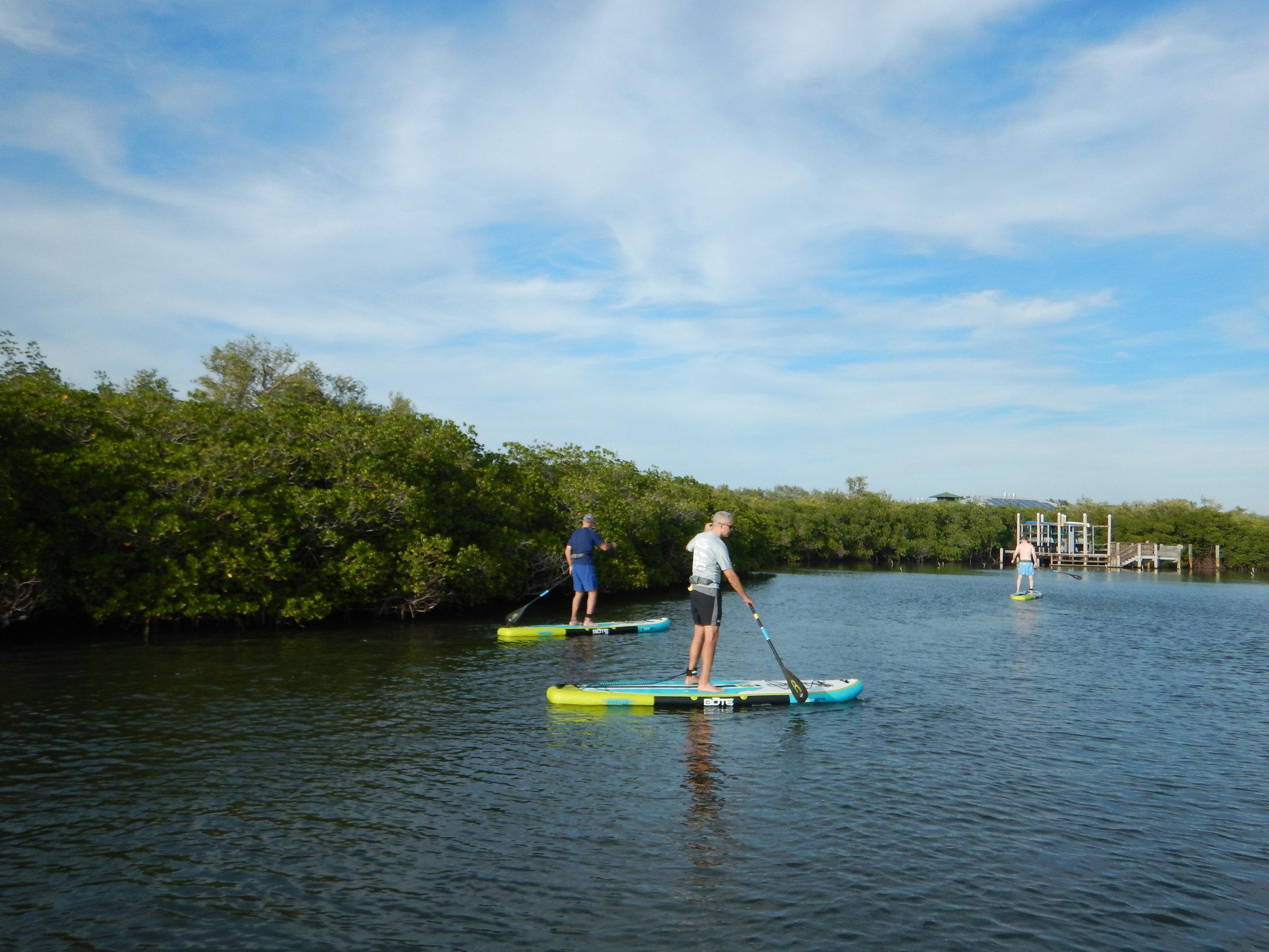 paddleboard, sea sup go, paddle vero, vero beach, paddle board tour, paddle board vero, paddleboard vero, paddleboard, paddleboarding, kayak, kayak tour, kayak vero, mangrove tour, vero tour,