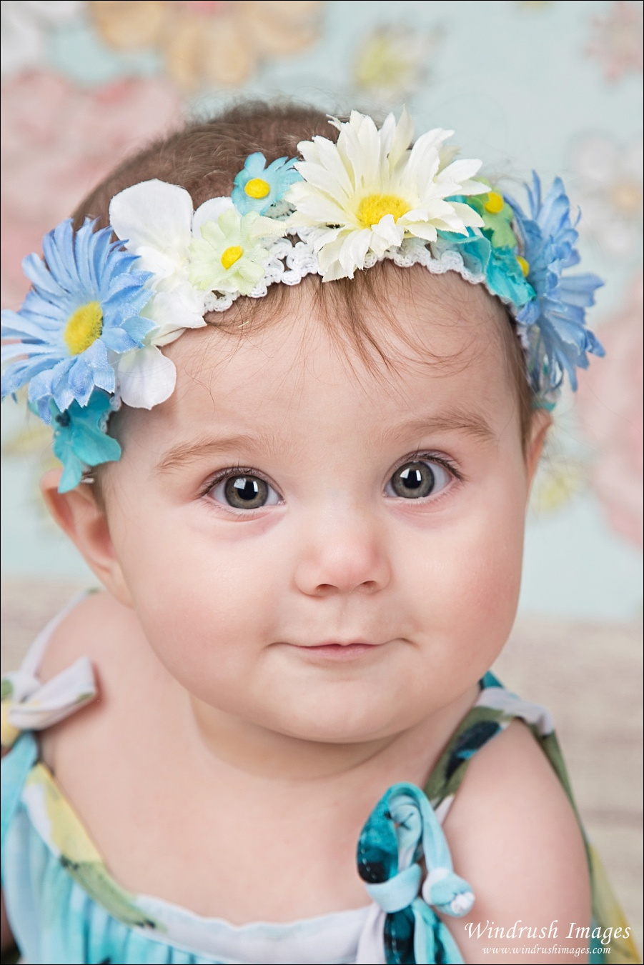Calgary baby photography of 6 month sitting bab girl with blue flowers