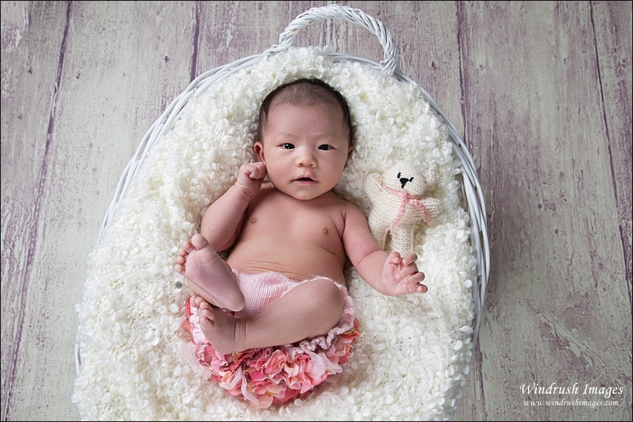 Awake one month old baby girl lying in basket with pink flowers and teddy bear for Calgary newborn photography session
