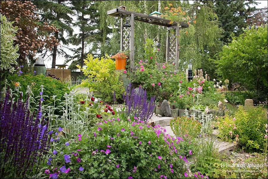 Calgary-urban-garden-colorful-design.jpg