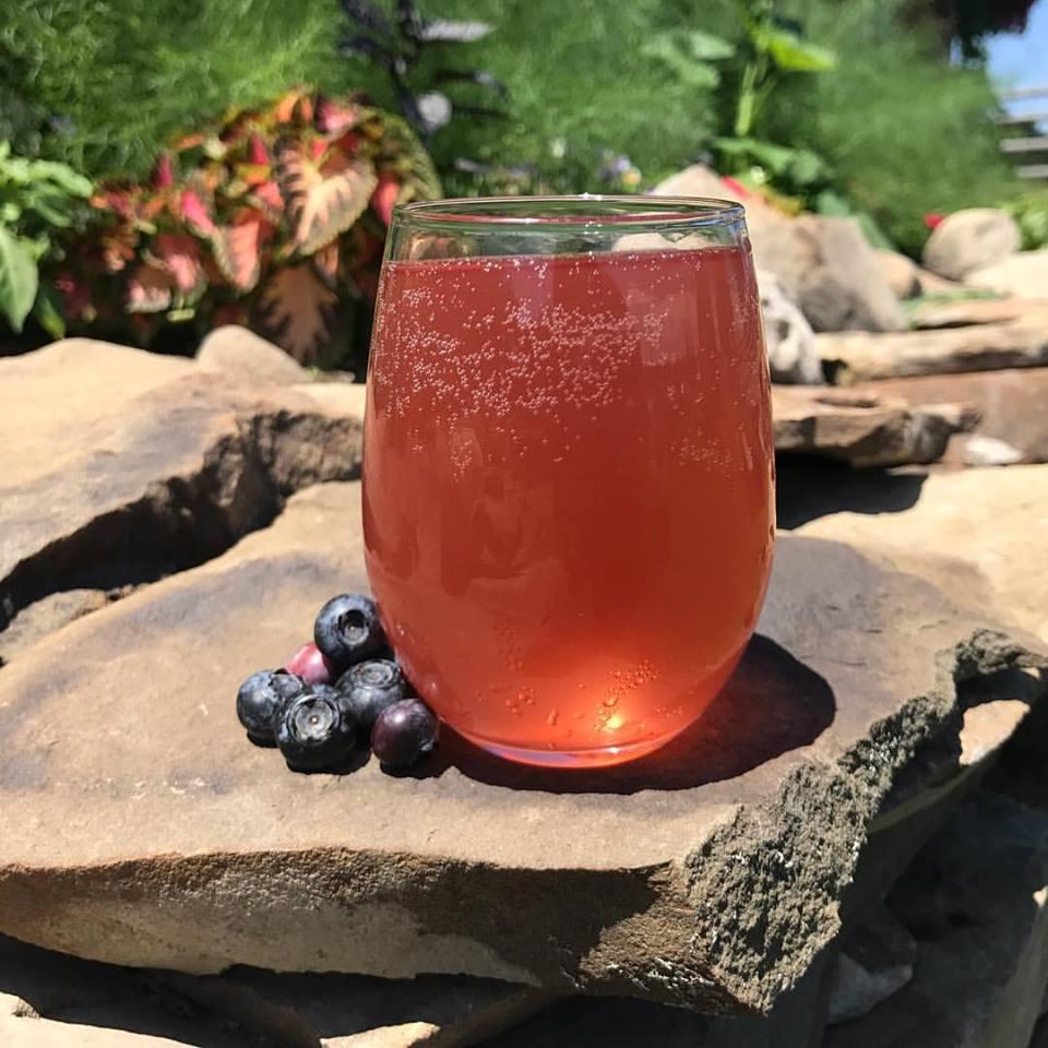 2071-07-07 boo berry.jpg