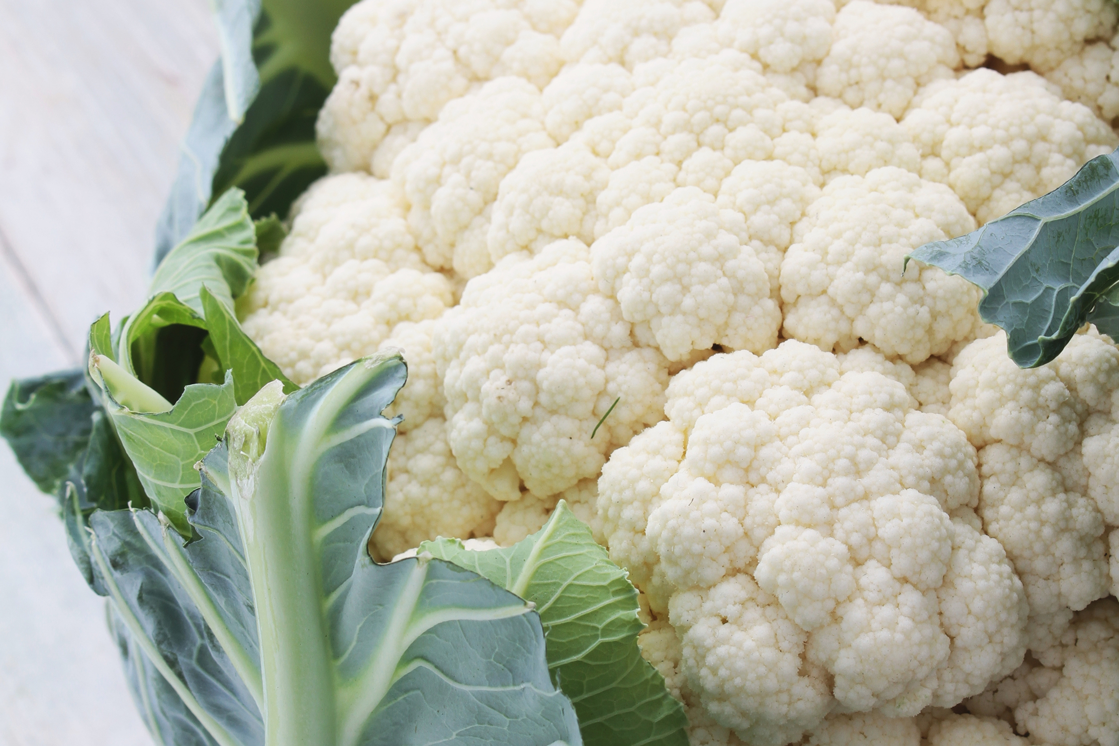 Cauliflower - (8-10 mos.)High in soluble fiber, cauliflower will assist in maintaining regularity but should not be baby's first vegetable as it can be difficult to digest. A good choice for moms-to-be, choline and vitamin B contribute to brain development and boost cognitive function. An unexpected source of vitamin C makes this a great choice over the winter months. Add to an array of fresh cut veggies as an after-school snack to maintain healthy eating habits throughout adolescence.