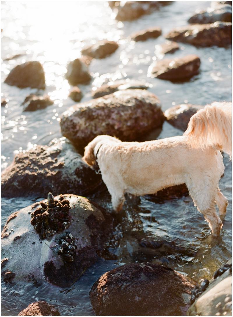 Malibu Photographer_0037.jpg