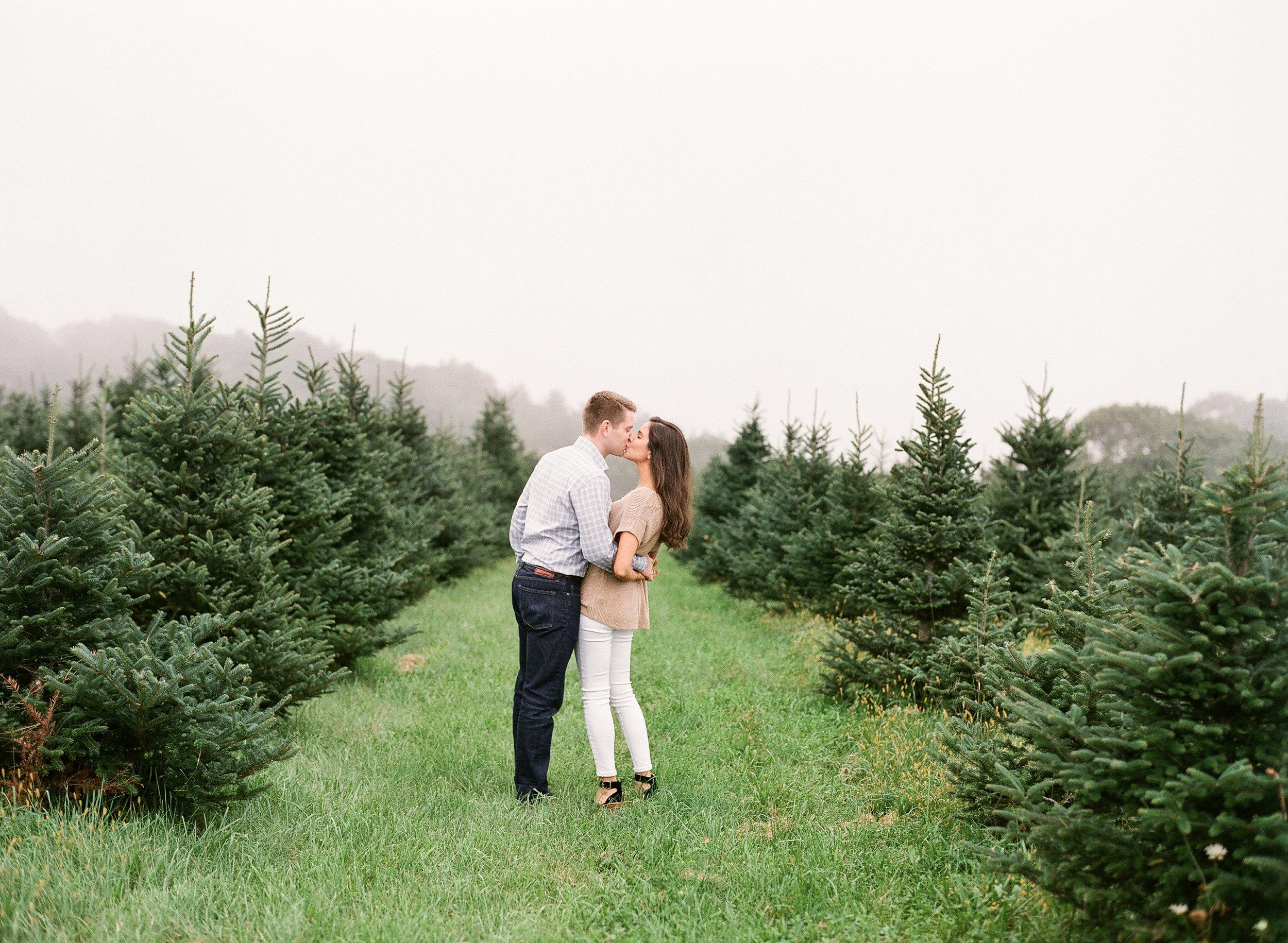 Christmas Tree Farm Engagement Photos