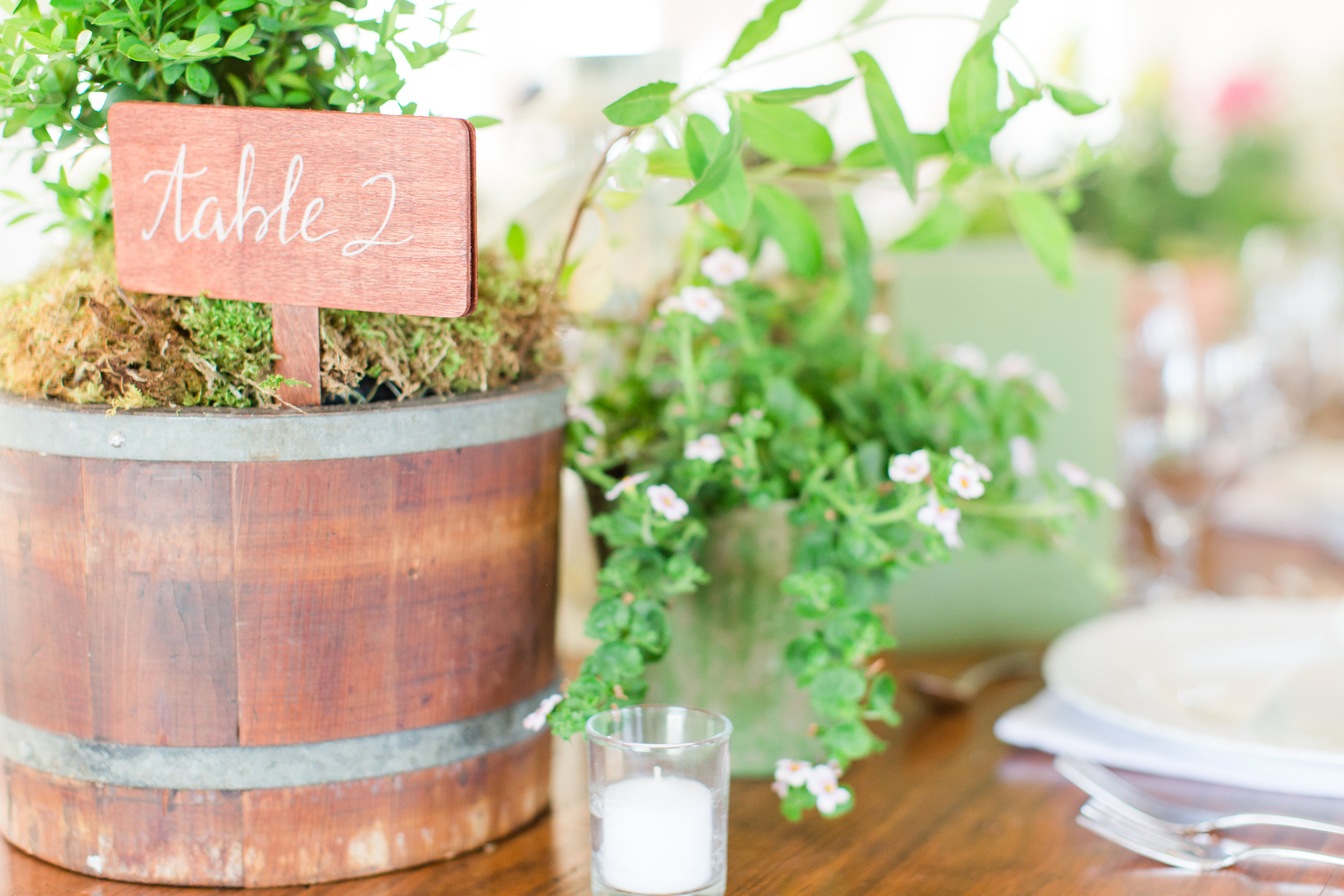 I love this little barrel container with a boxwood in it.All the flowers for this tables were locally sourced or foraged.