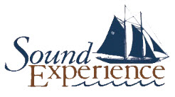 Sound Experience Logo.jpg