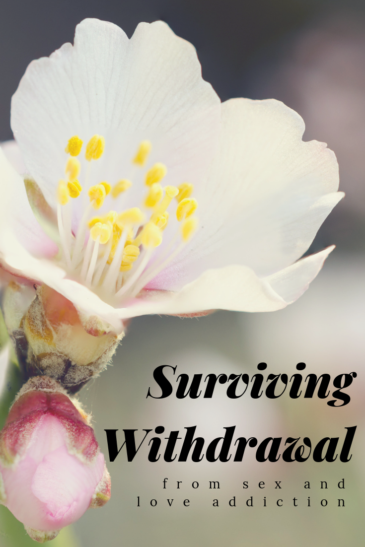 pinterest_surviving_withdrawal_from_sex_and_love_addiction_restored_hope_counseling_therapy_ann_arbor_novi_michigan_christian.png