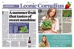 Irish Examiner, Leonie Cornelius