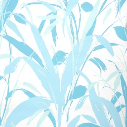 Aqua on White