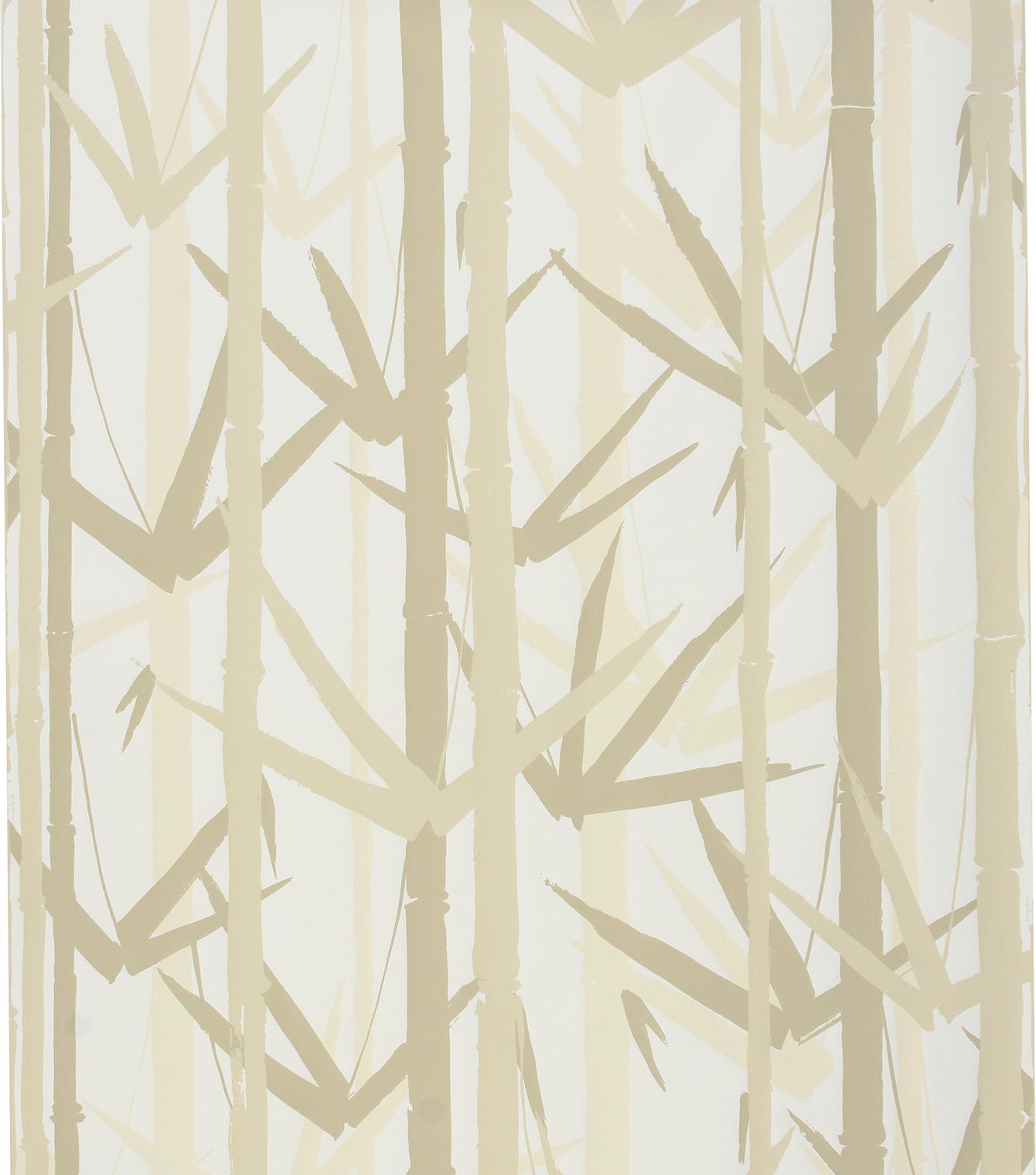 Bamboo garden Mushroom on white wr.jpg