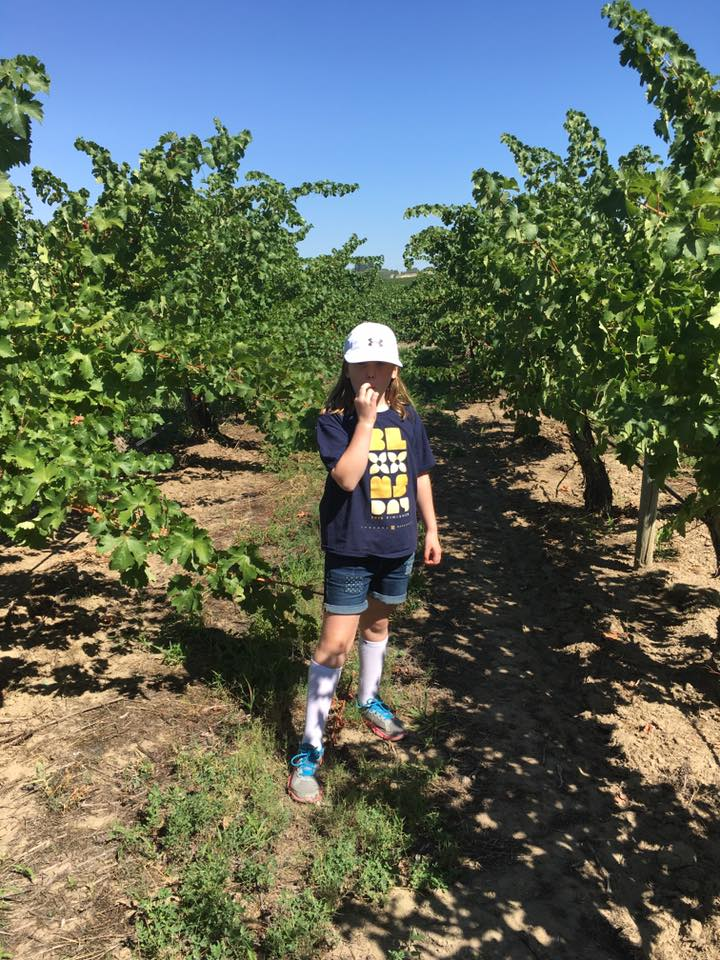 You're never too young to start learning the joys of grape juice, as a third generation of the Arbor Crest family discovers the Bacchus Vineyard