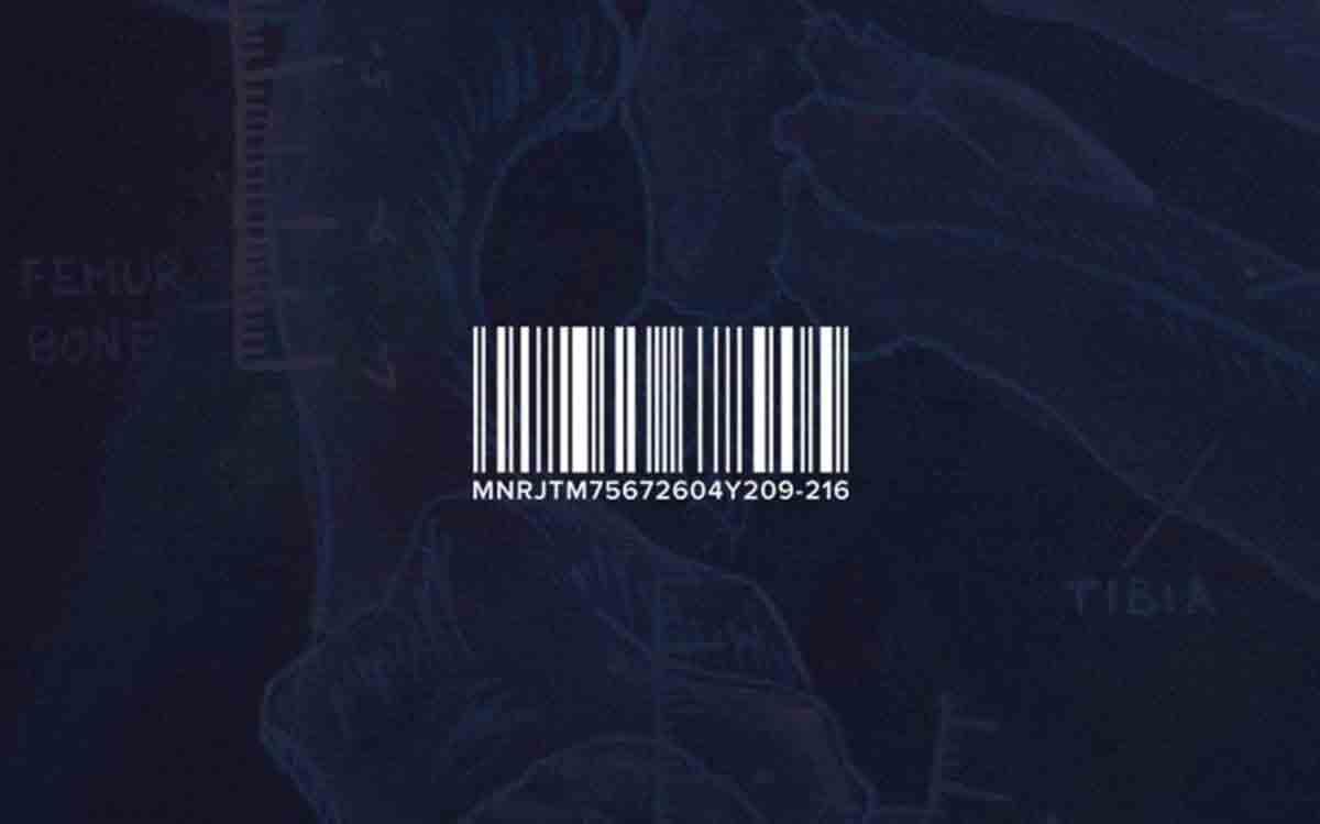 julieta-manrique-columbus-ohio-artist-brand-iconography-barcode.jpg