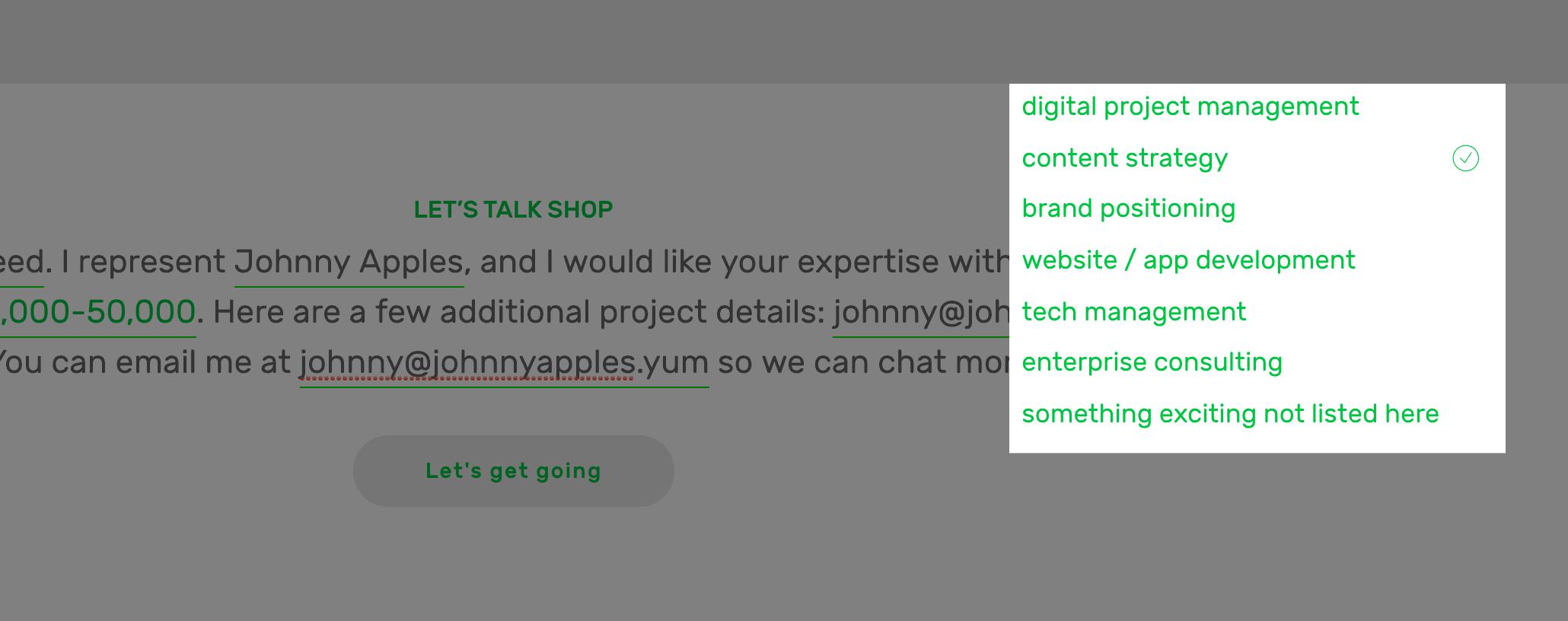 andy-stiebler-llc-columbus-digital-consultant-website-natural-language-form2.jpg